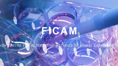 Evolution of FICAM and development of human relevant in-vitro models